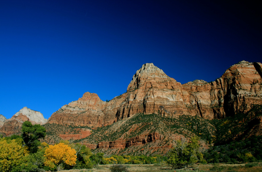 See what hike you feel up for at Zion National Park
